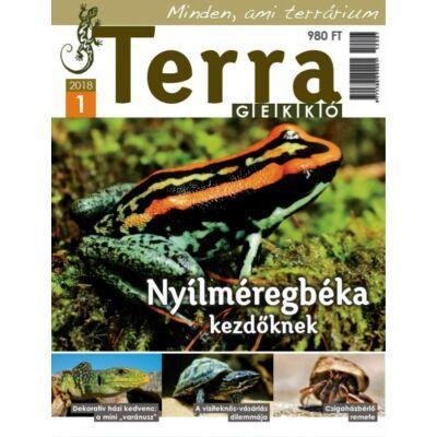 Terra Gekkó