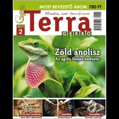 Terra Gekkó  2